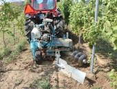 Agromelioracije pri postavitvi novega vinogra...