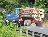 Izvajanje regijske certifikacije gozdov po si...