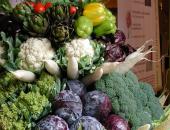 Novosti pri uveljavljanju podpore za zelenjad...