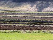 Določitev dejanskega uporabnika kmetijskih in...