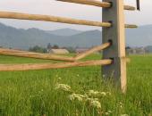 Finančna pomoč  je namenjena blažitvi poslabšanja ekonomskega položaja kmetije, zaradi nepredvidljivega škodnega dogodka.