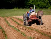 Omejitev gibanja ter opravljanje kmetijske in...