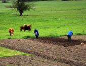 Kmetje morajo ostati zdravi, da bodo lahko oskrbeli prebivalstvo s hrano