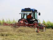 Sobota, 15. junij 2019, s pričetkom ob 9. uri na kmetiji Škrjanec v Čužnji vasi pri Trebelnem