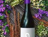 Etiketa - osebna izkaznica vina