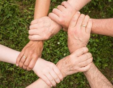 Delavnici za ustanavljanje skupin in organizacij p...