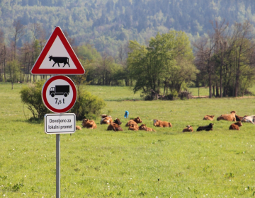Slovensko kmetijstvo 2017 v številkah