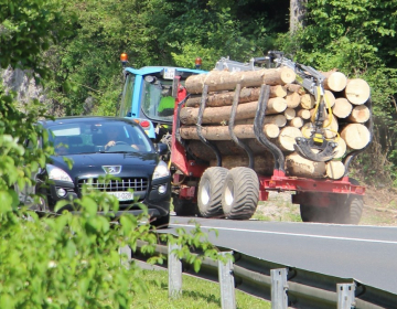 Izvajanje regijske certifikacije gozdov po sistemu...