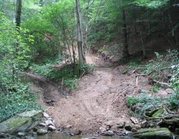 Gozdarska razpisa prinašata sredstvca za odpravo škode in obnovo gozda ter za ureditev gozdnih vlak.