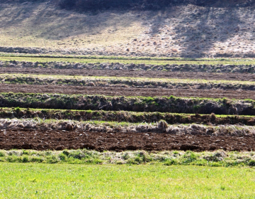 Spremembe PRP pri razmejitvi območij z naravnimi o...