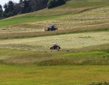 KGZS o delu Sklada kmetijskih zemljišč in gozdov