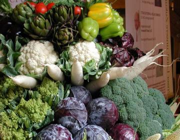 Novosti pri uveljavljanju podpore za zelenjadnice...
