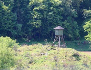 Prost prehod čez kmetijska in gozdna zemljišča