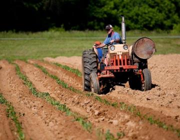 Omejitev gibanja ter opravljanje kmetijske in gozd...