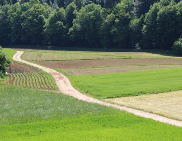 O programu dela in težavah kmetijstva