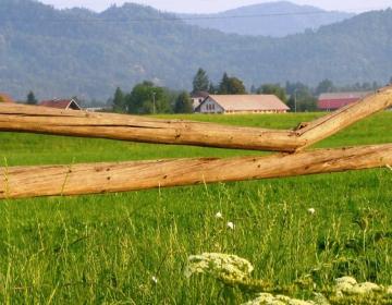 Podpora za naložbe v kmetijska gospodarstva za let...