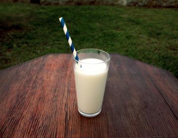 OBVESTILO za sektorja mleka in mesa