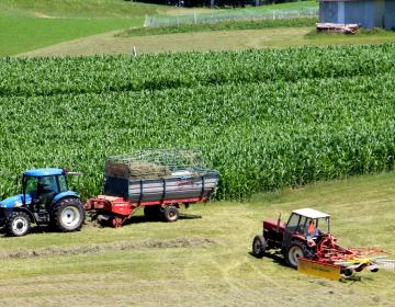 S spremembo PRP 2014-2020 je predviden še en razpis za majhne kmetije.