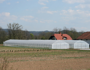 Zakon predvideva poenostavitve pri postavitvi rastlinjakov.