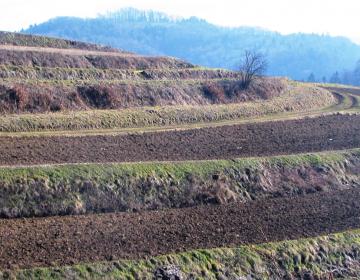 Za več vpliva na zemljiško politiko