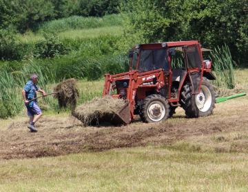 RAZPIS za male kmetije
