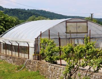 RAZPIS: Podpora za naložbe v kmetijska gospodarstv...